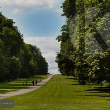 Social distancing in Cirencester Park - digital high res photo file